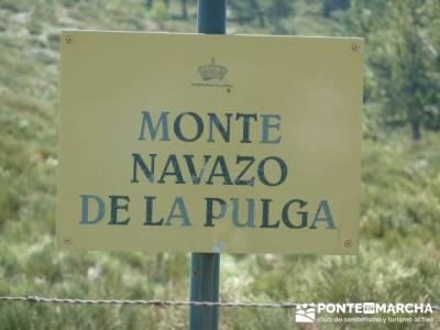 Cuerda de Cuelgamuros - Senderismo Ávila - Ruta Madrid; calzado trekking